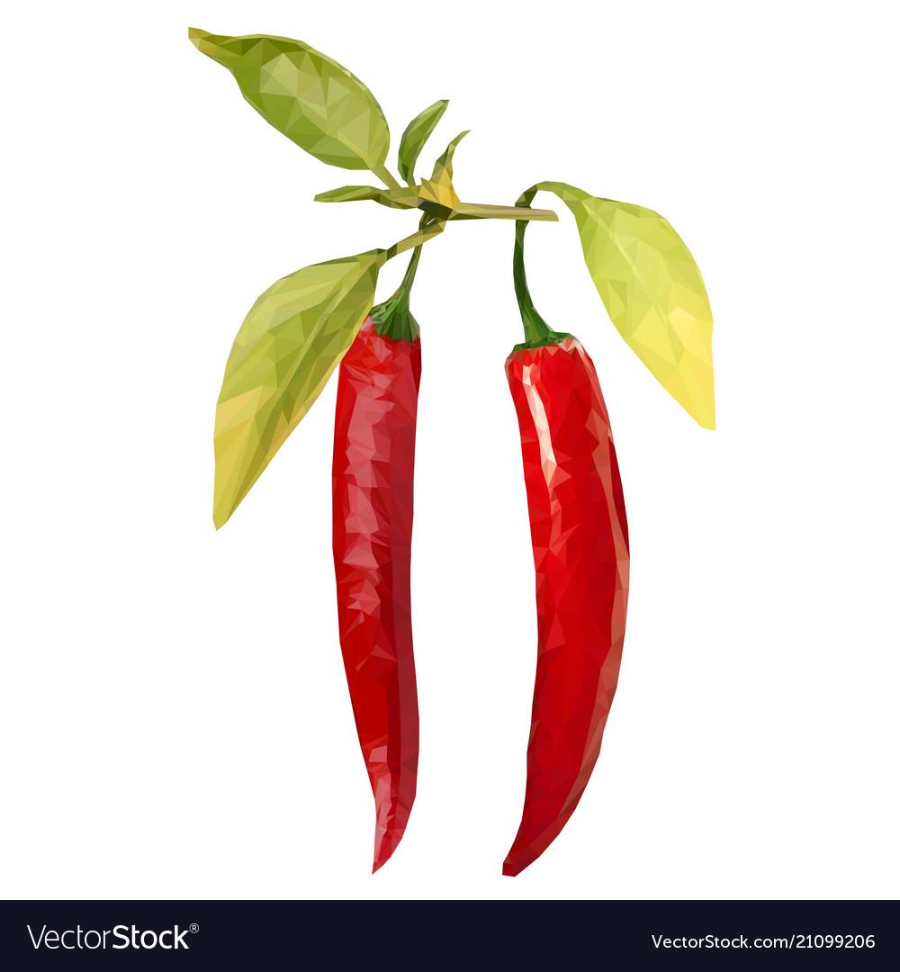 Red hot chili pepper pod realistic image