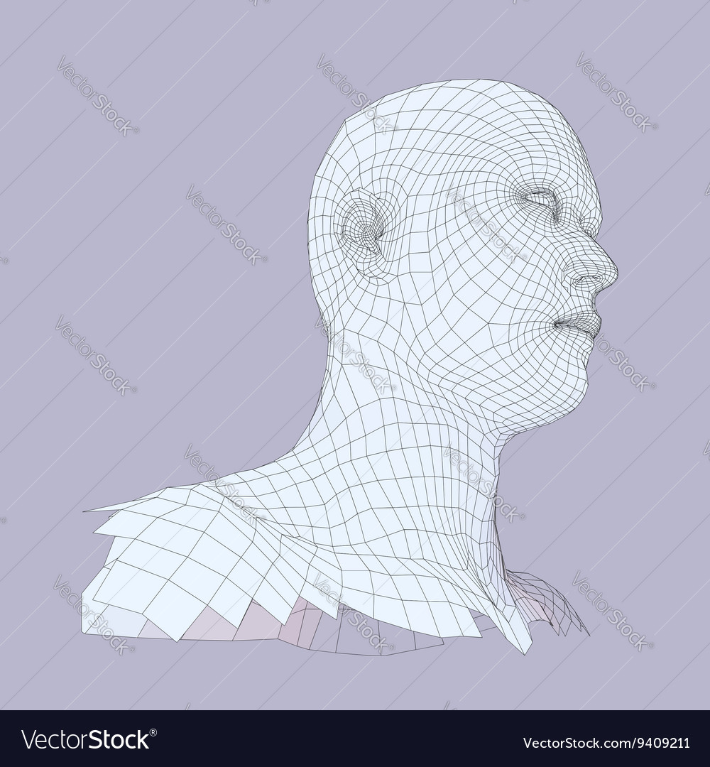 Head of the Person from a 3d Grid Human Head Wire
