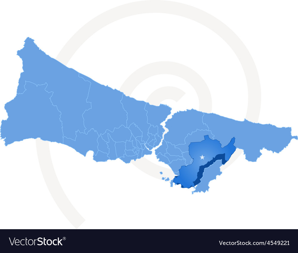 Istanbul Map With Administrative Districts Where Vector Image