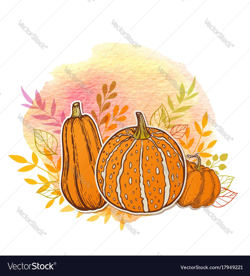 Orange pumpkins and watercolor texture