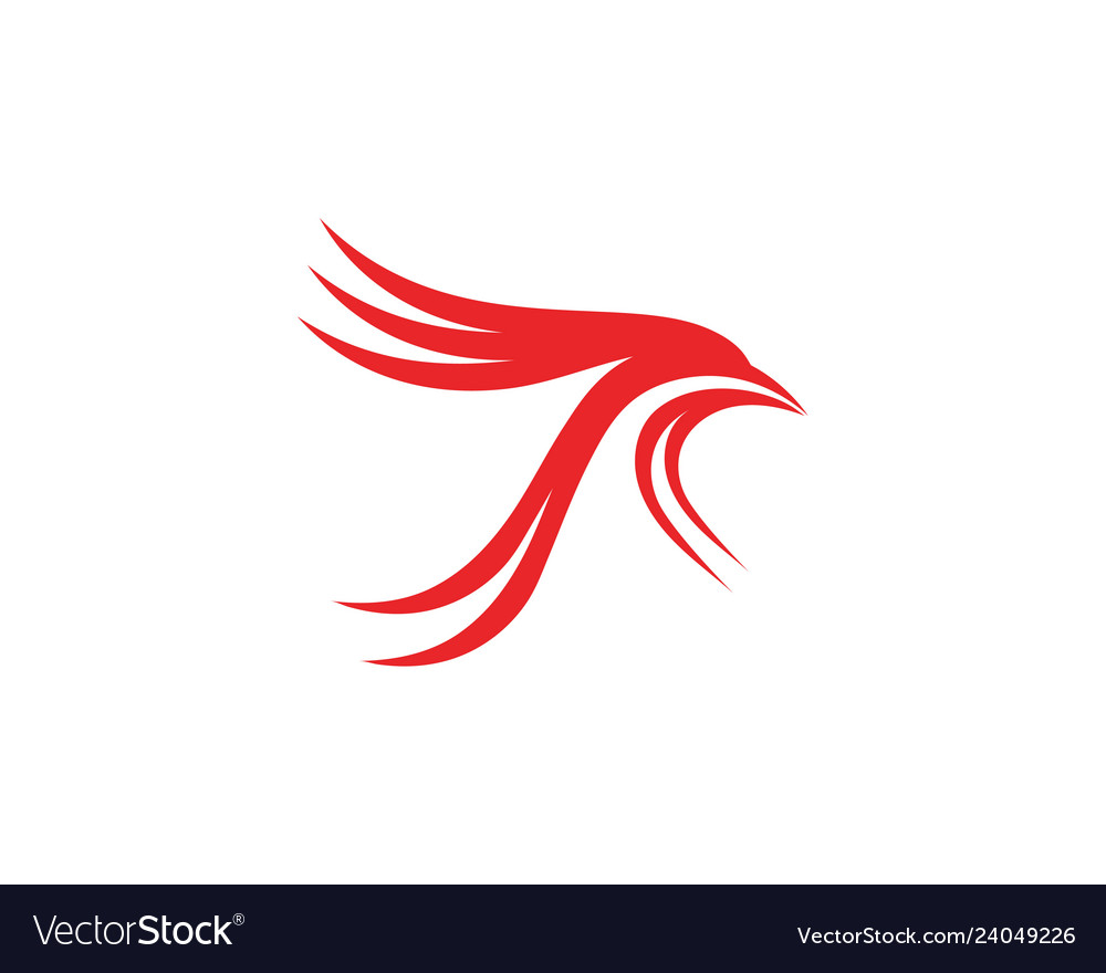 Bird and wing logo template