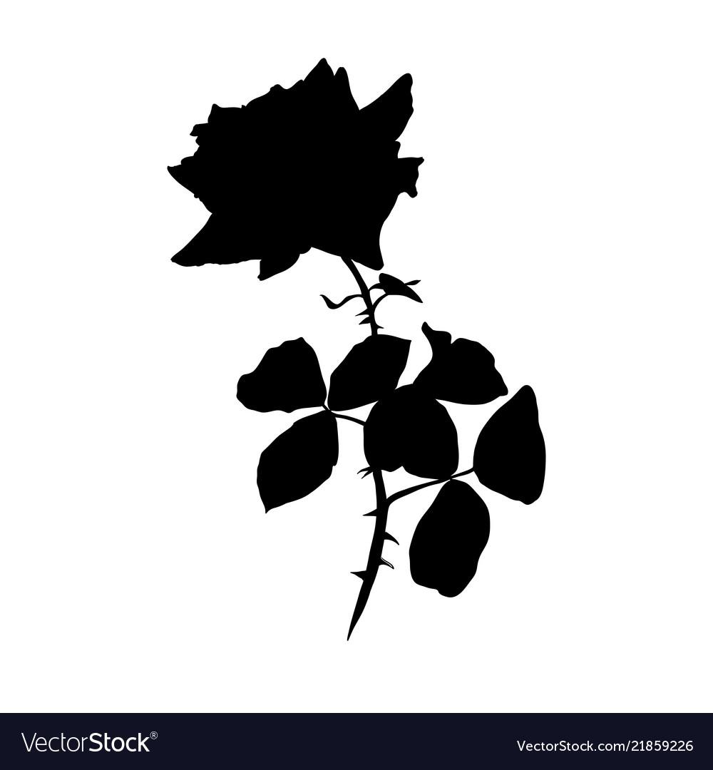 Rose black silhouette barbed flower