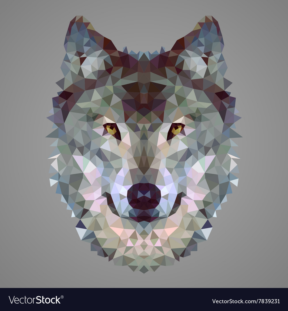 Wolf low poly portrait vector image