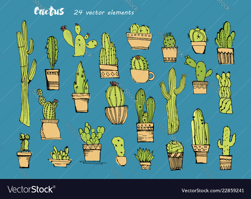 Cacti handdrawn sketchcollection of different