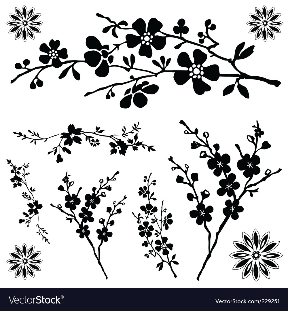 Flower Ornaments Royalty Free Vector Image Vectorstock