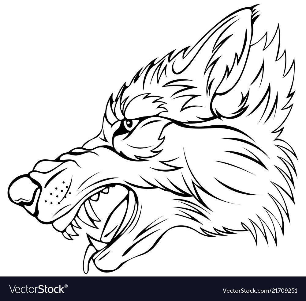 Head of angry wolf