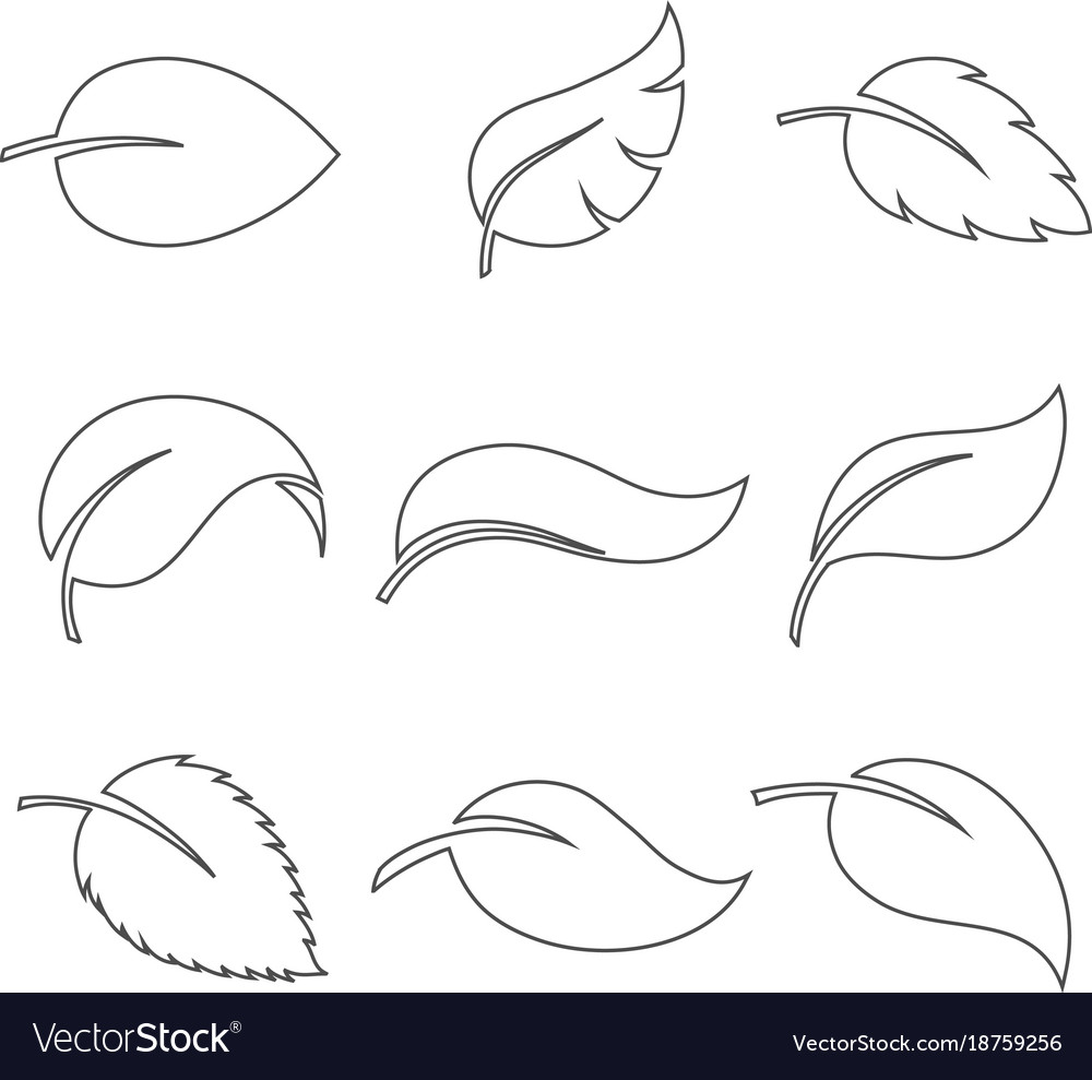 Leaves thin icon set