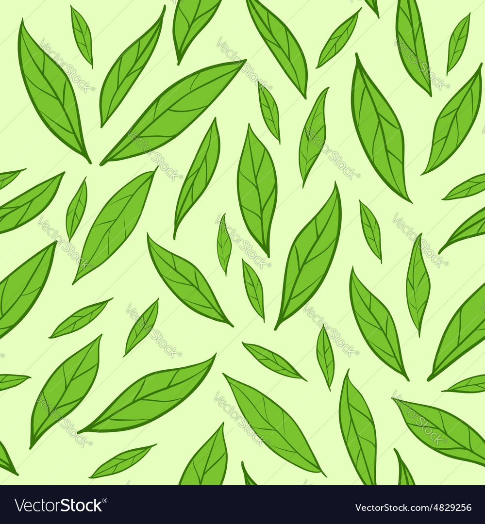 seamless pattern with green tea leaves royalty free vector