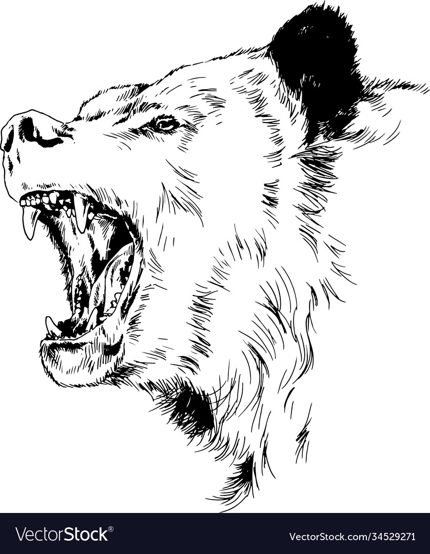 Grinning face a snarling bear painted hand vector