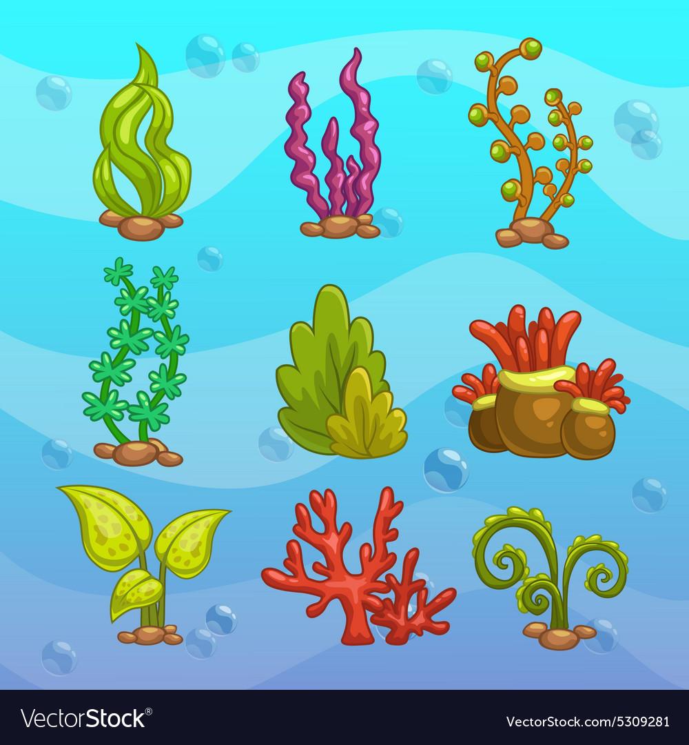 Картинки рыбки водоросли камешки для детского сада