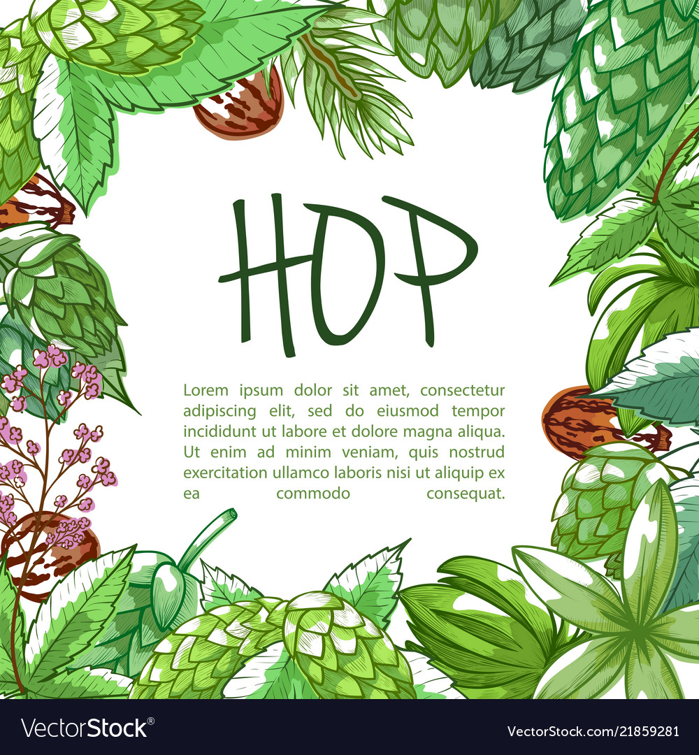 Hop plant frame banner with copy space