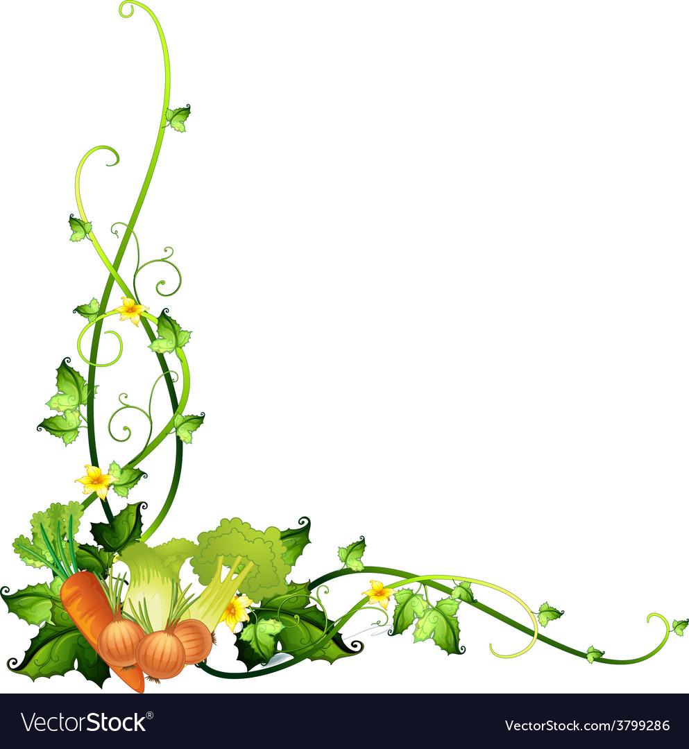 A vegetable border template