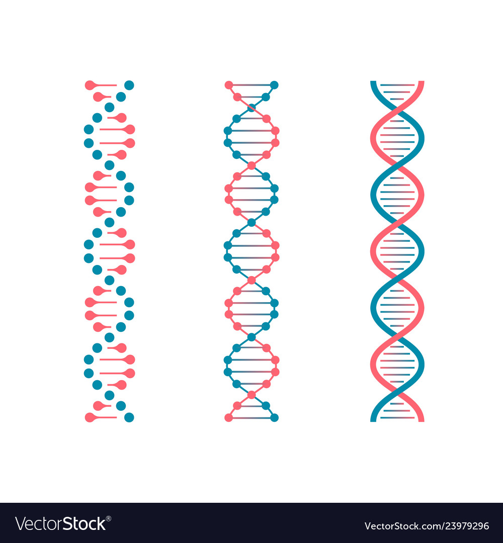 Chemistry code dna double genetic code of human