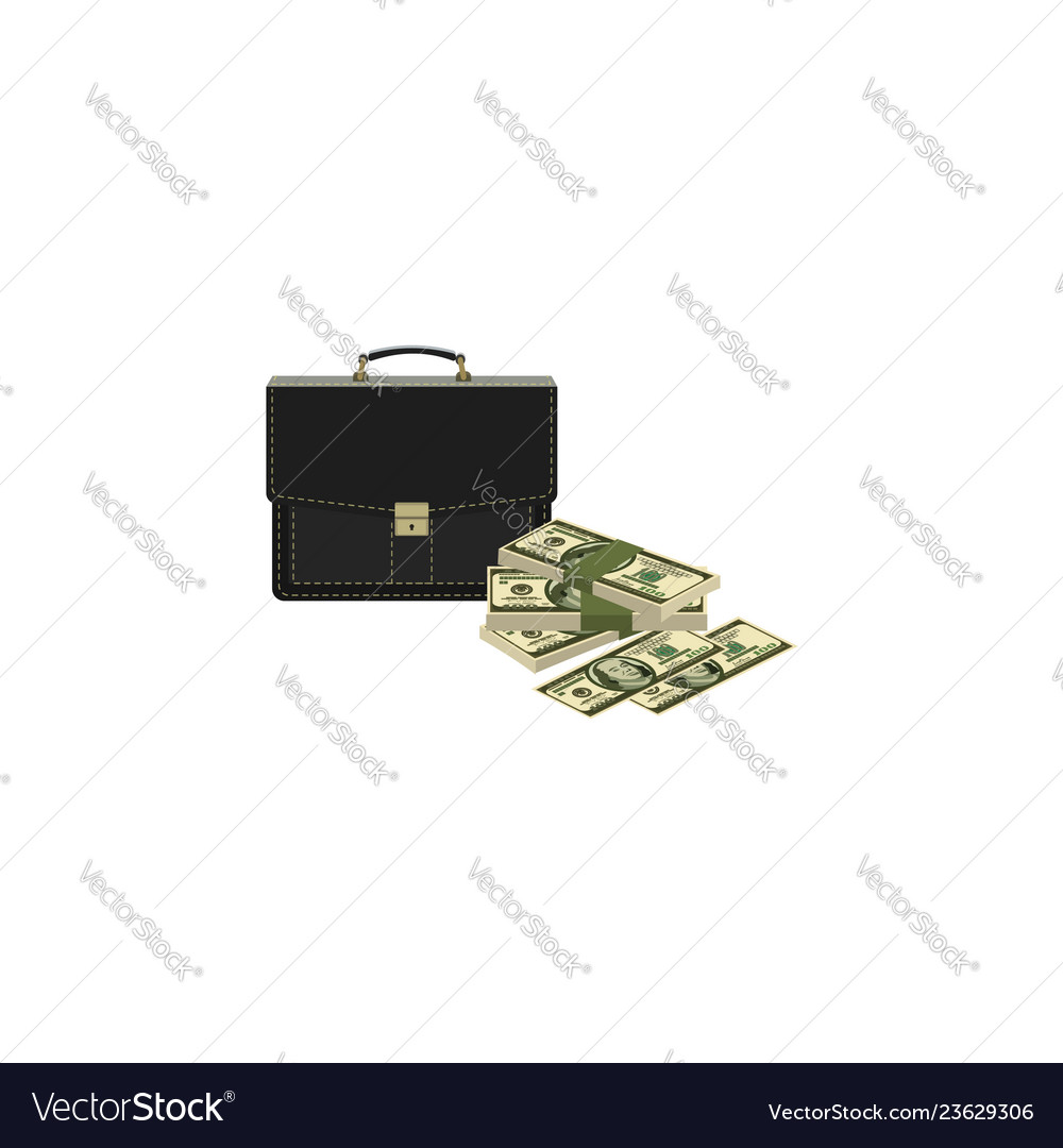 Color image portfolio and money briefcase