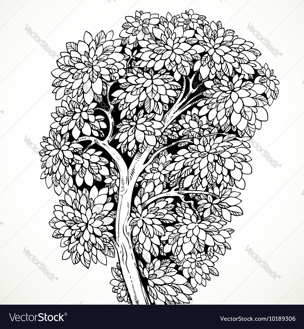 Graphically drawing tree isolated on white vector image