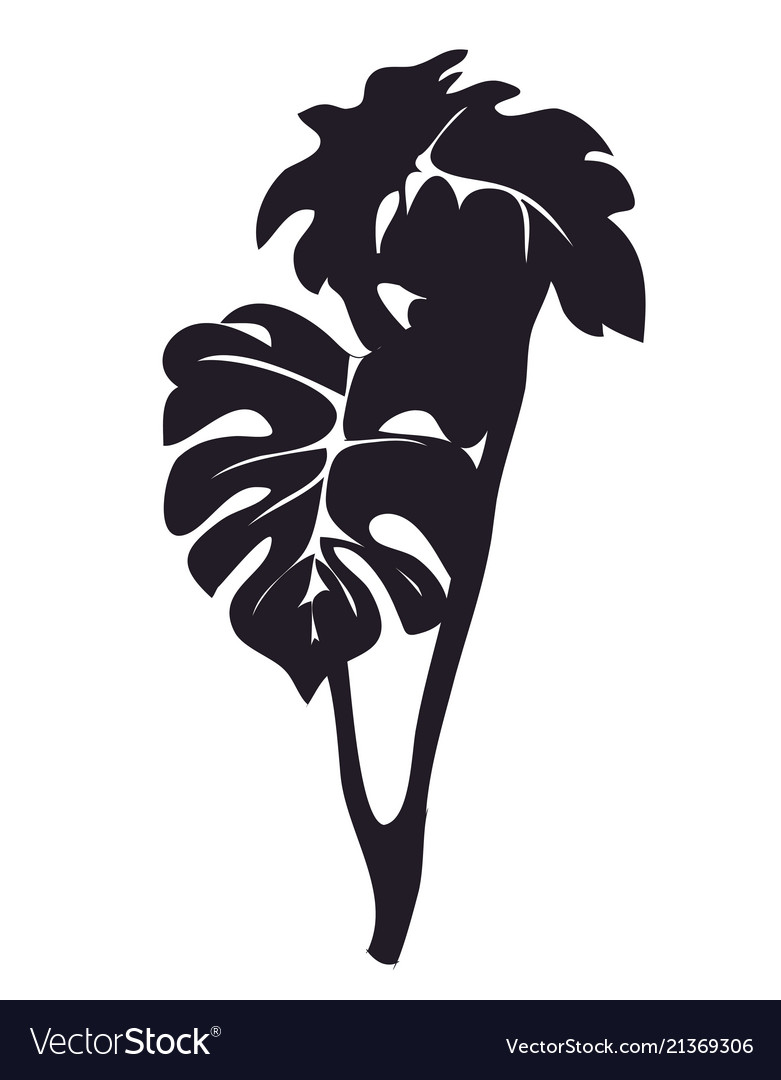 House plant on a branch silhouette