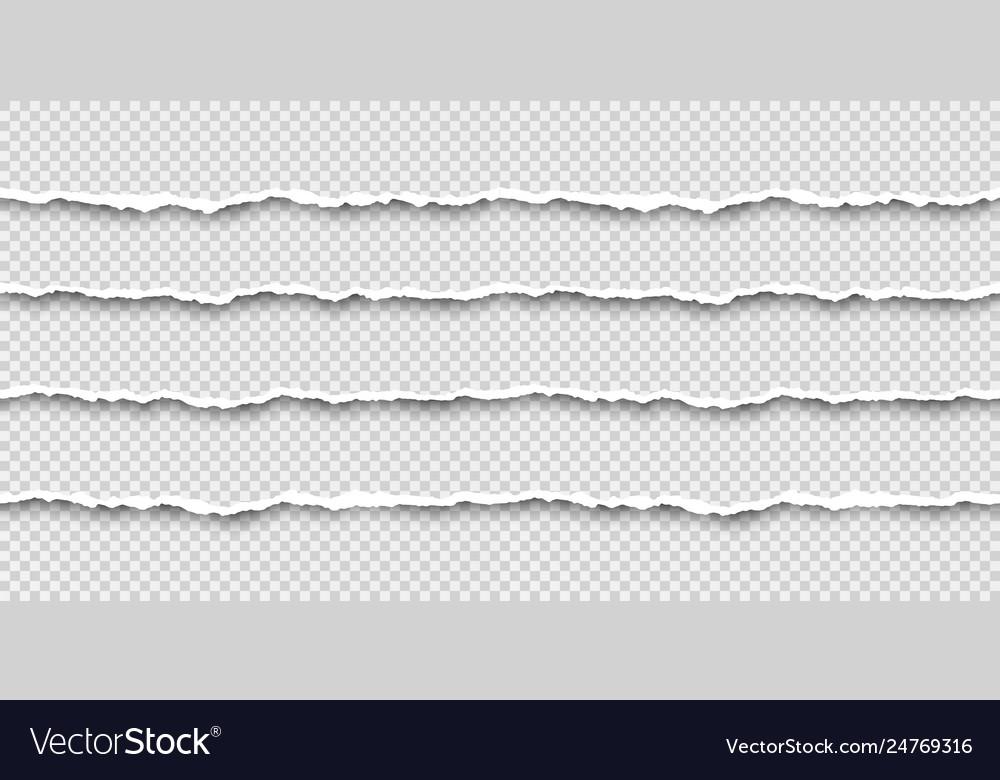 Set tear seamless paper stripes paper texture