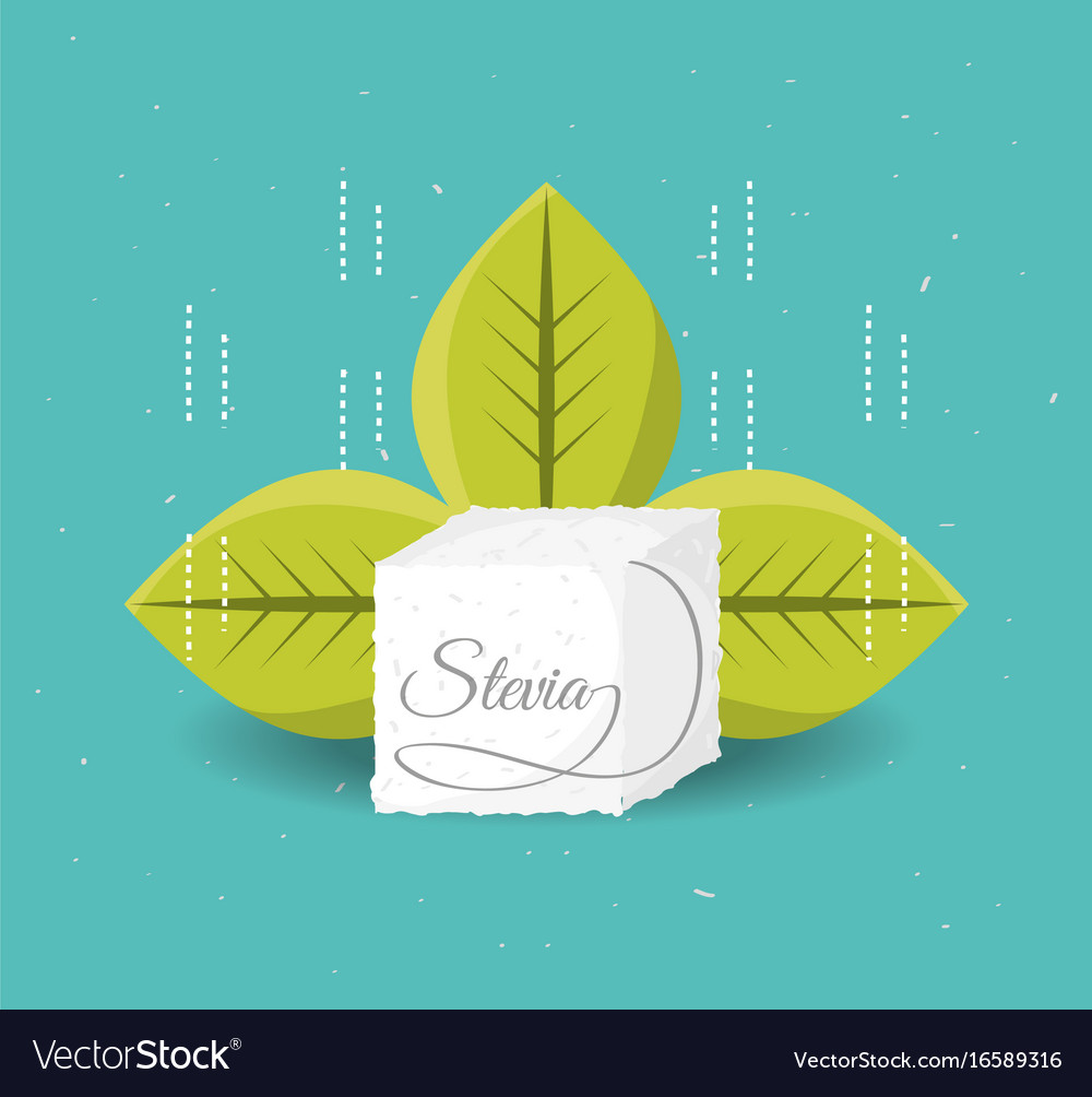 Stevia natural sweetener with leaves