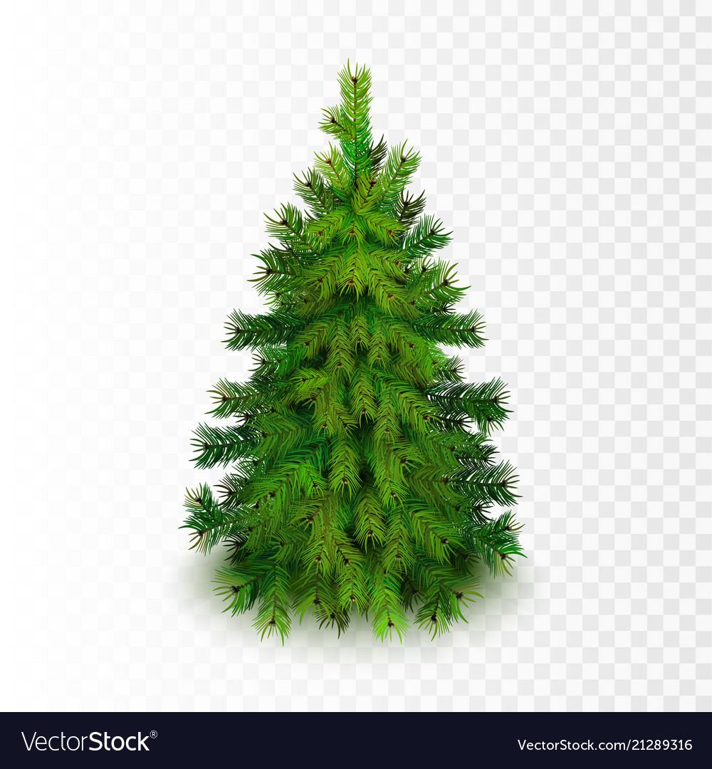 Stock realistic christmas tree