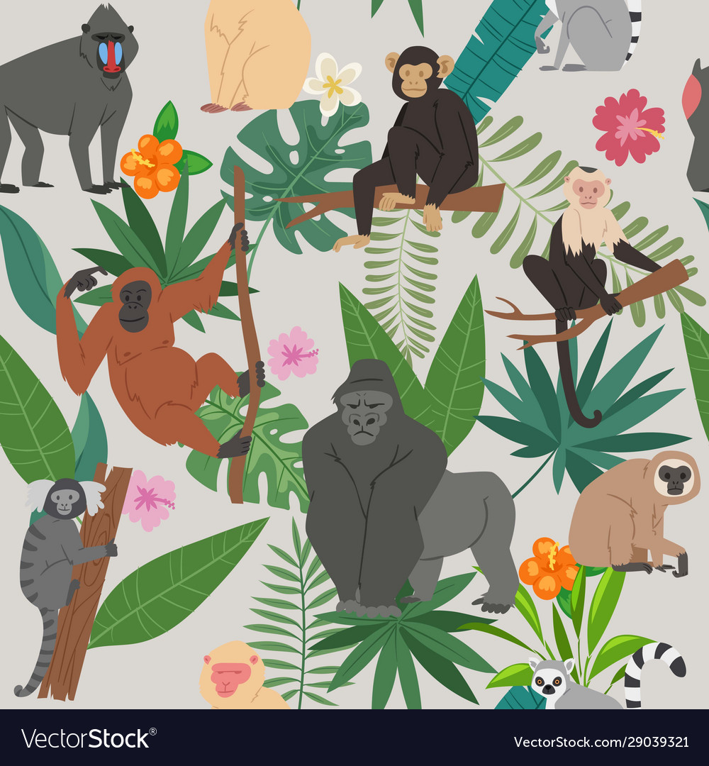 Monkeys and tropical leaves and trees