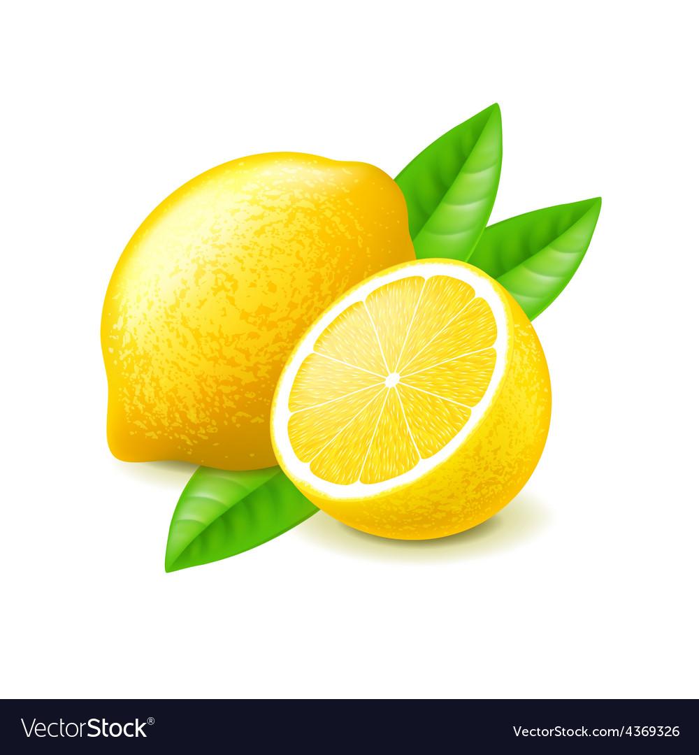 Lemon and slice isolated on white