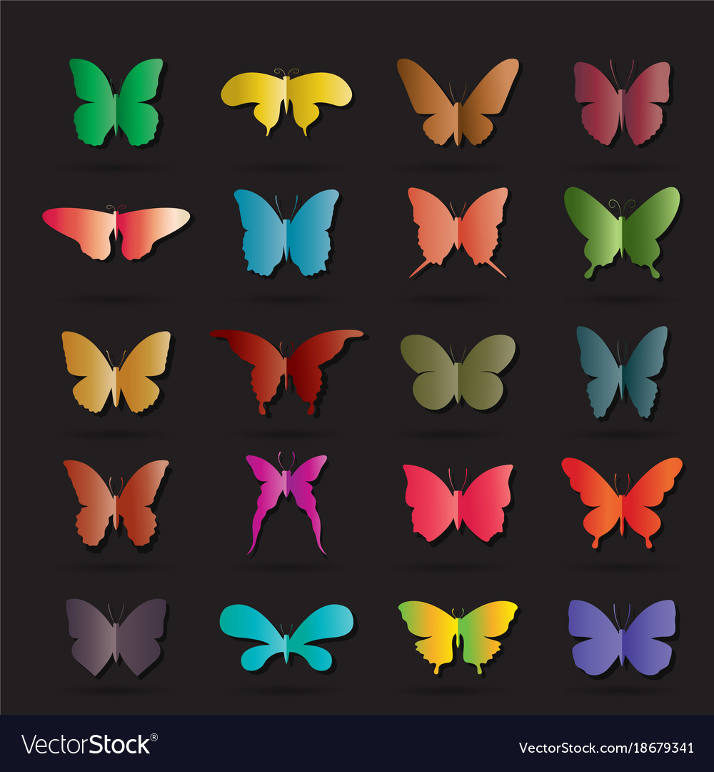 Group of colorful butterfly on black background