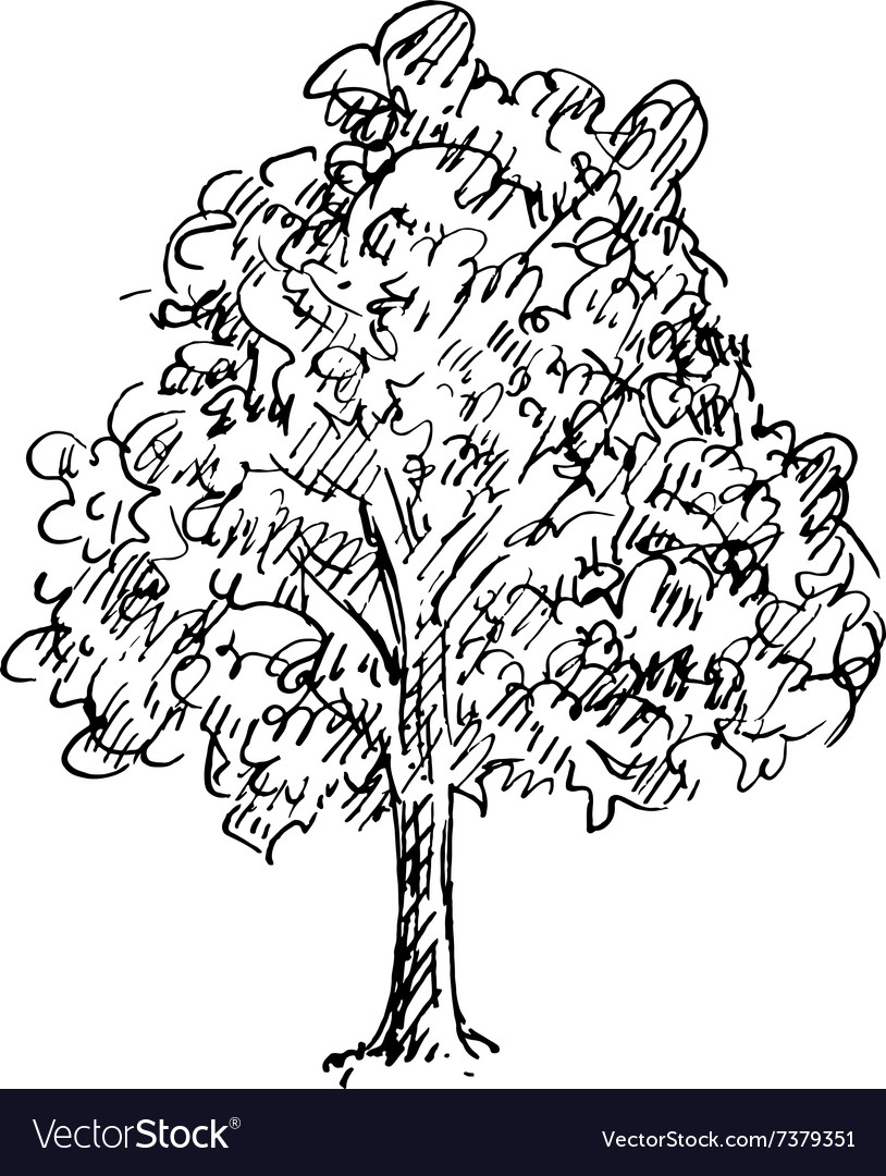 Black and white sketch of a tree