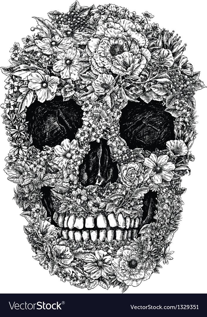 Flower Skull Linework vector image