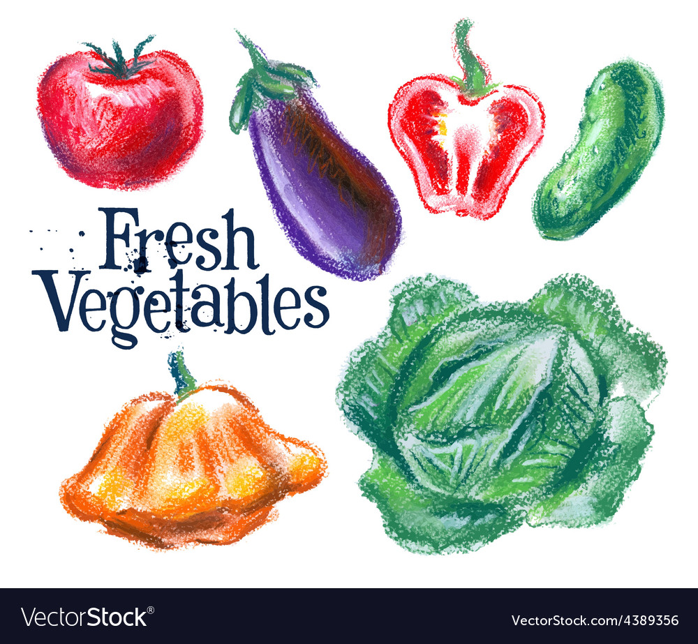 Fresh vegetables logo design template