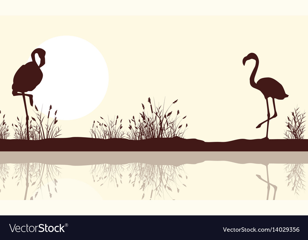 Lake landscape and flamingo silhouettes
