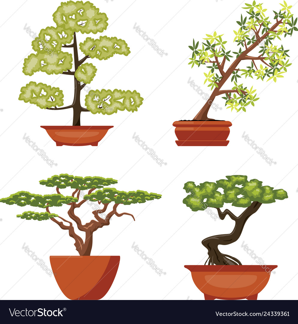 Set of colorful bonsai trees in pots