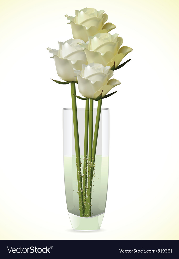 White And Ivory Roses In A Vase Royalty Free Vector Image