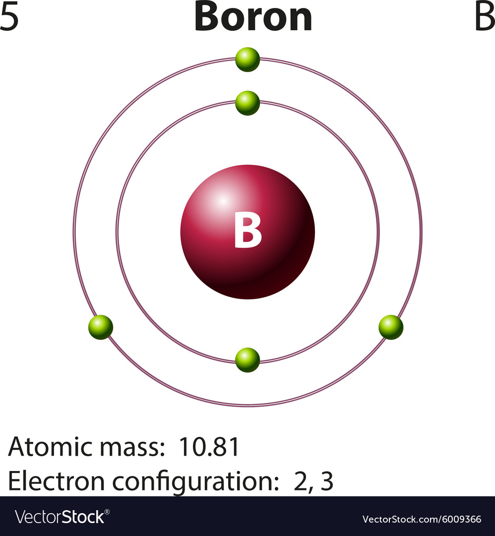 Diagram representation of the element boron vector image