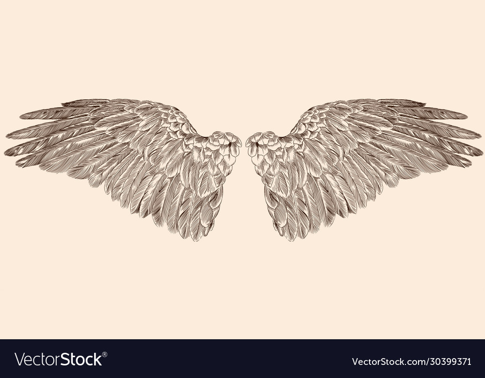 Two wings an angel