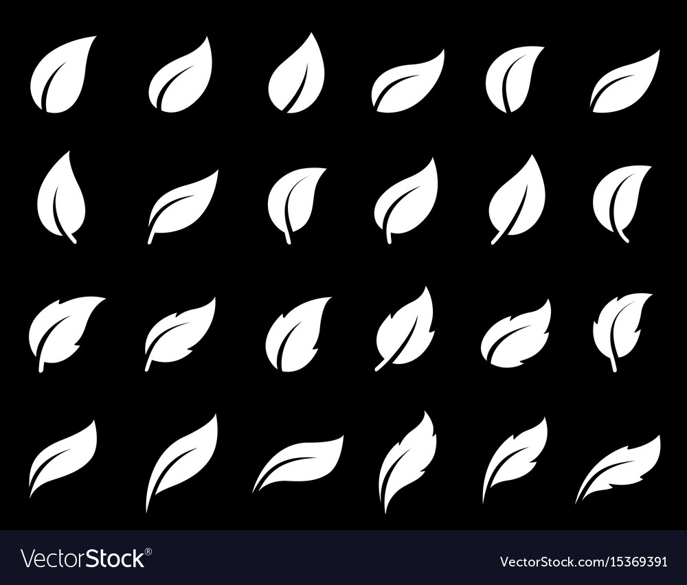 Abstract leaf icons set vector image