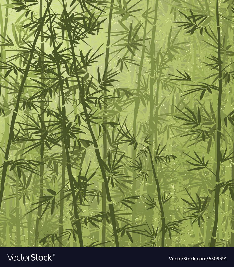 Bamboo05