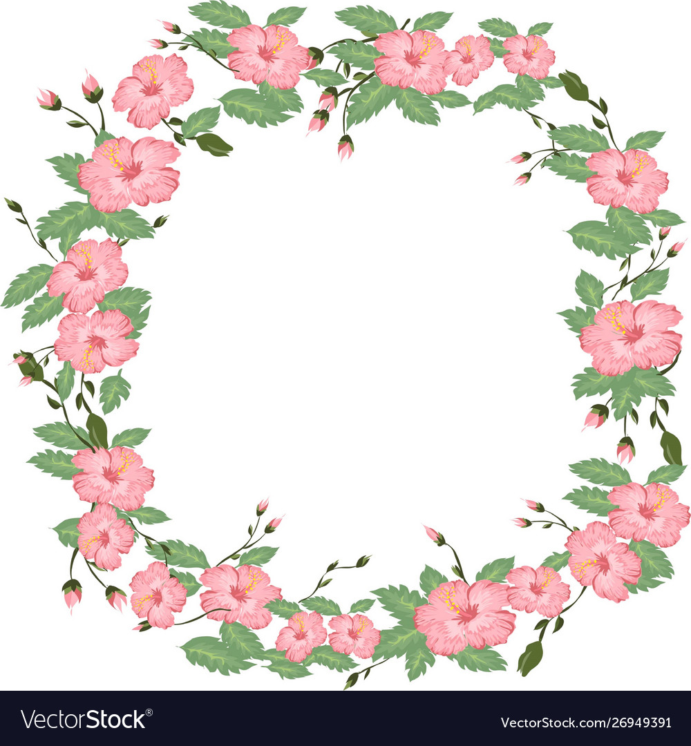 beautiful hibiscus flower frame and background vector image vectorstock