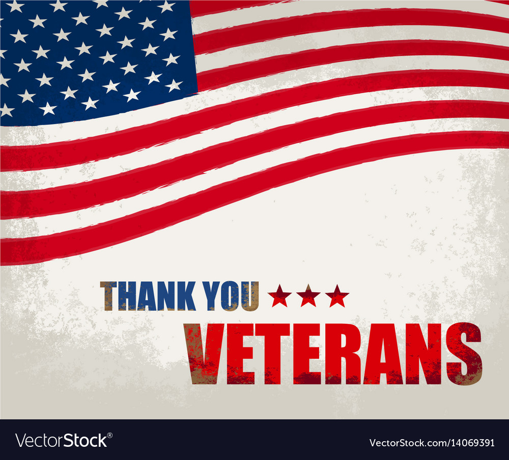 Veterans day in the us