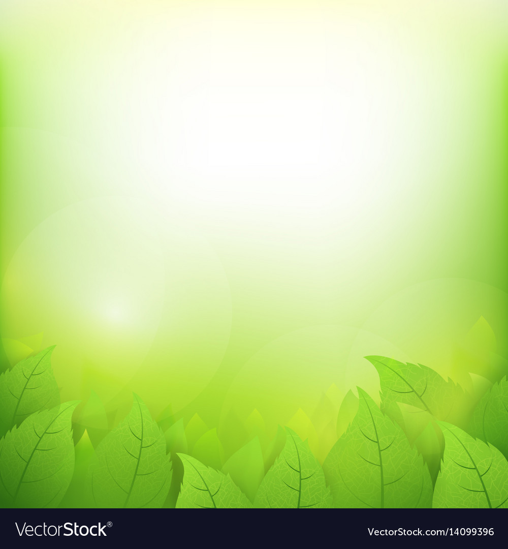Abstract Gradient Green Background With