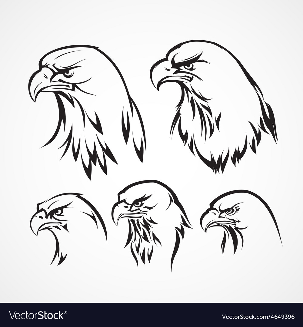 eagle badge template silhouette royalty free vector image