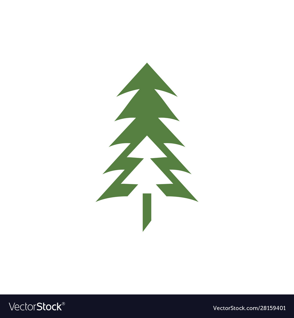 Pine tree icon design template isolated