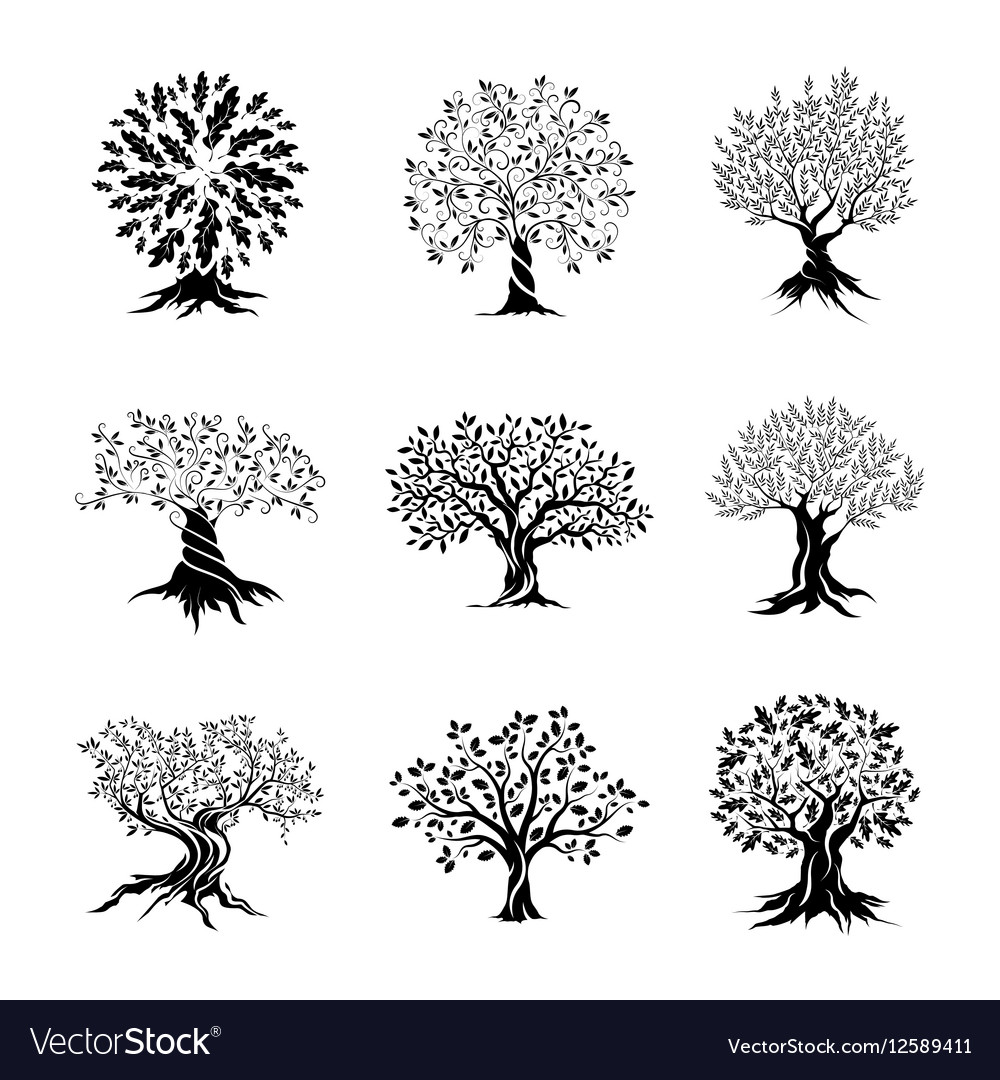 Beautiful oak trees silhouette set