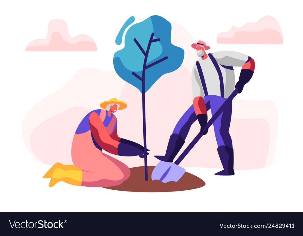 Couple male and female pensioners planting tree