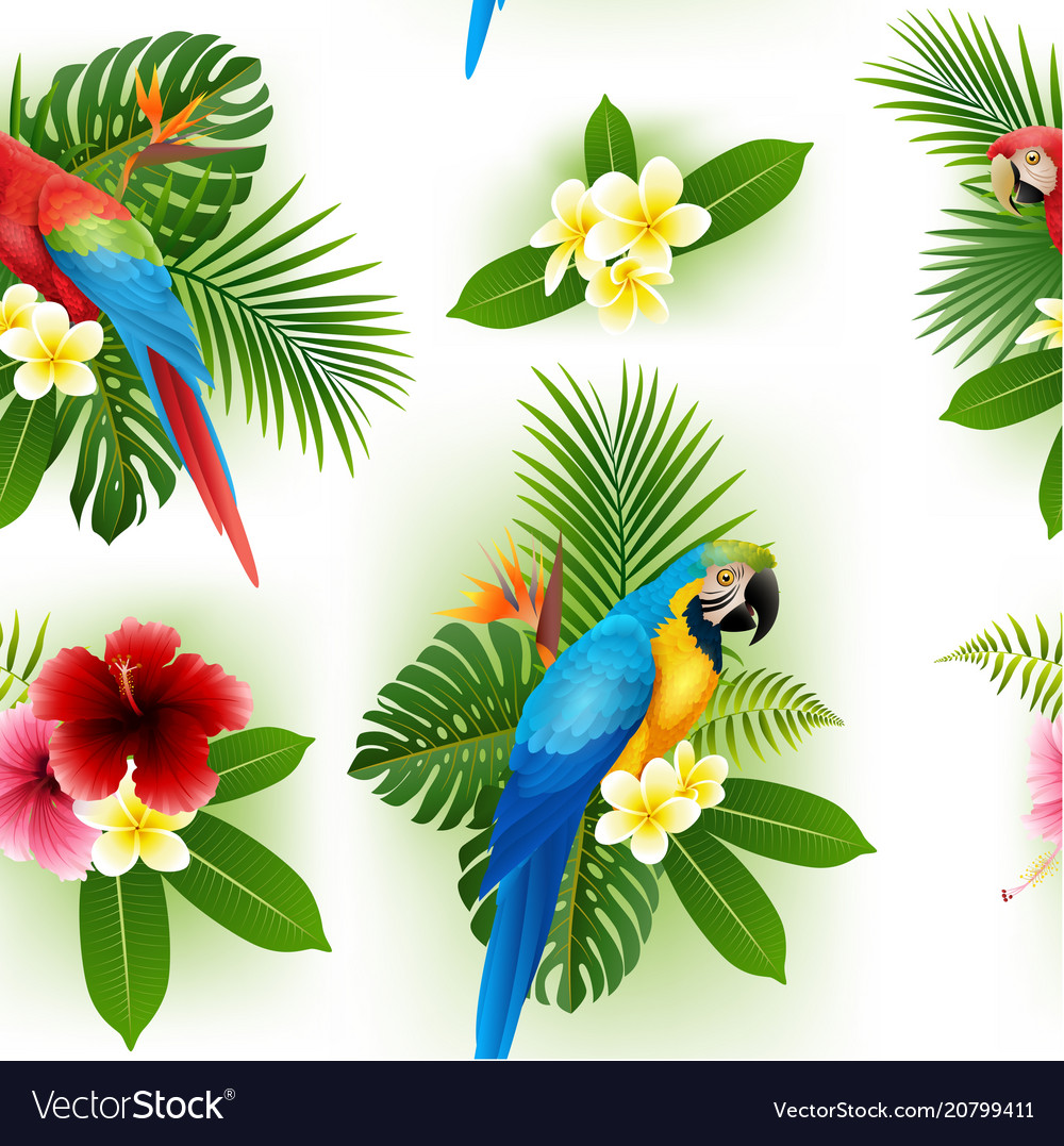 Flower pattern is smooth and parrot vector image