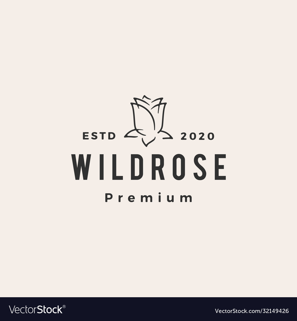 Wild rose flower hipster vintage logo icon vector