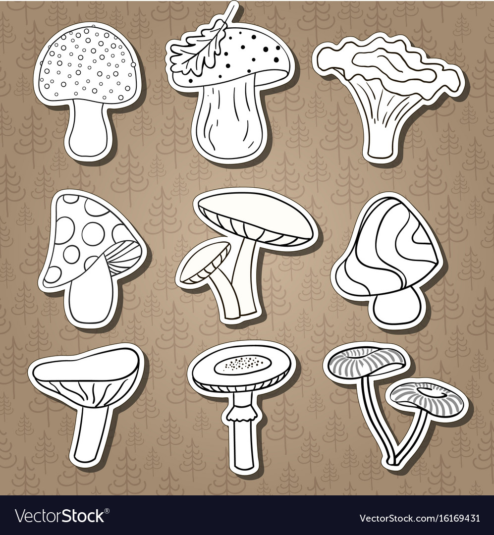Set of stickers with beautiful cute cartoon vector image