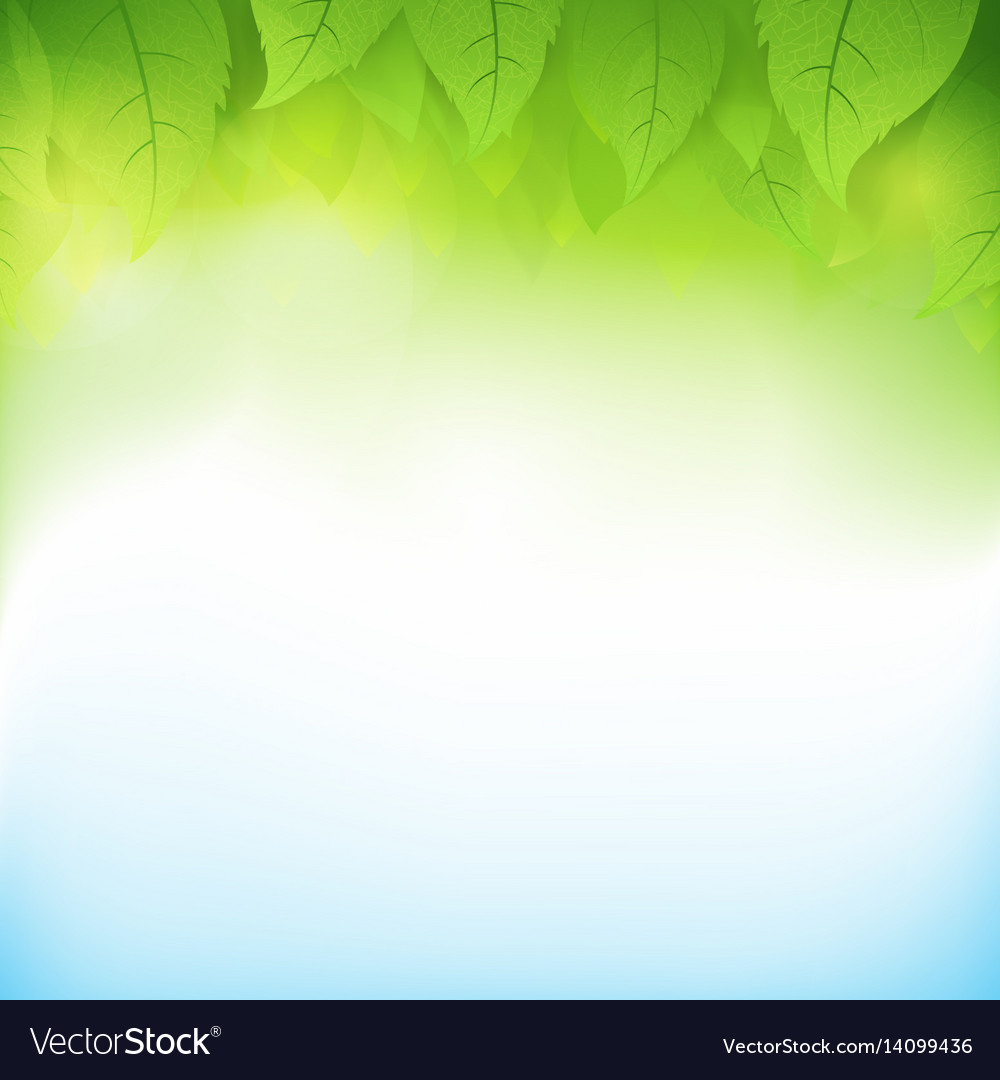 Abstract gradient green background with vector image