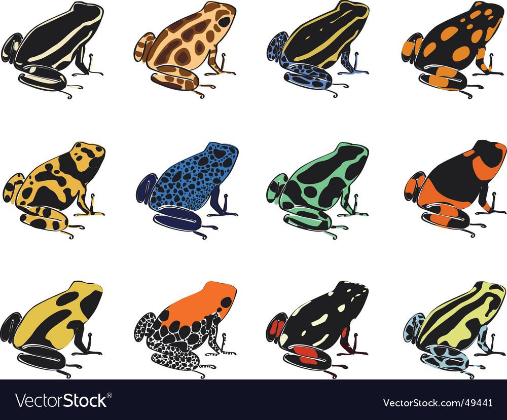 various species of poison dart frogs royalty free vector rh vectorstock com Red-Eyed Tree Frog Golden Poison Dart Frog