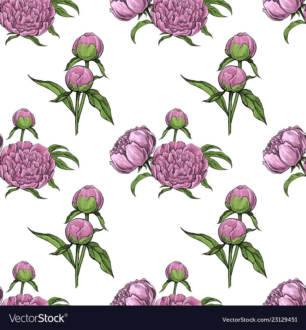 Peonies floral seamless pattern