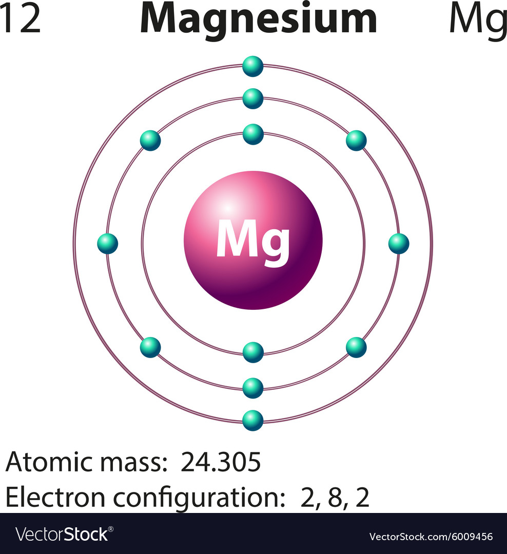 Diagram for magnesium diy enthusiasts wiring diagrams diagram representation of the element magnesium vector image rh vectorstock com bohr diagram for magnesium ion bohr diagram for magnesium ccuart Image collections